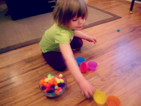 Color Sorting Activity for Toddlers - Farm Fresh Family